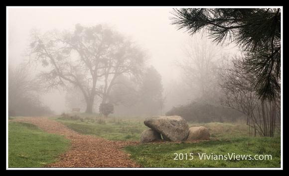 Path in Fog
