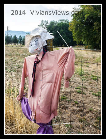 Scarecrow on the Fence